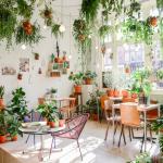 urban-jungle-decoratrice-talloires